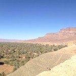 Wonderful views of the Draa Valley palmeries stretching back to Agdz from Tamnougalt