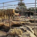 The tanneries at Taroudant - doesn't quite capture how awful they were!