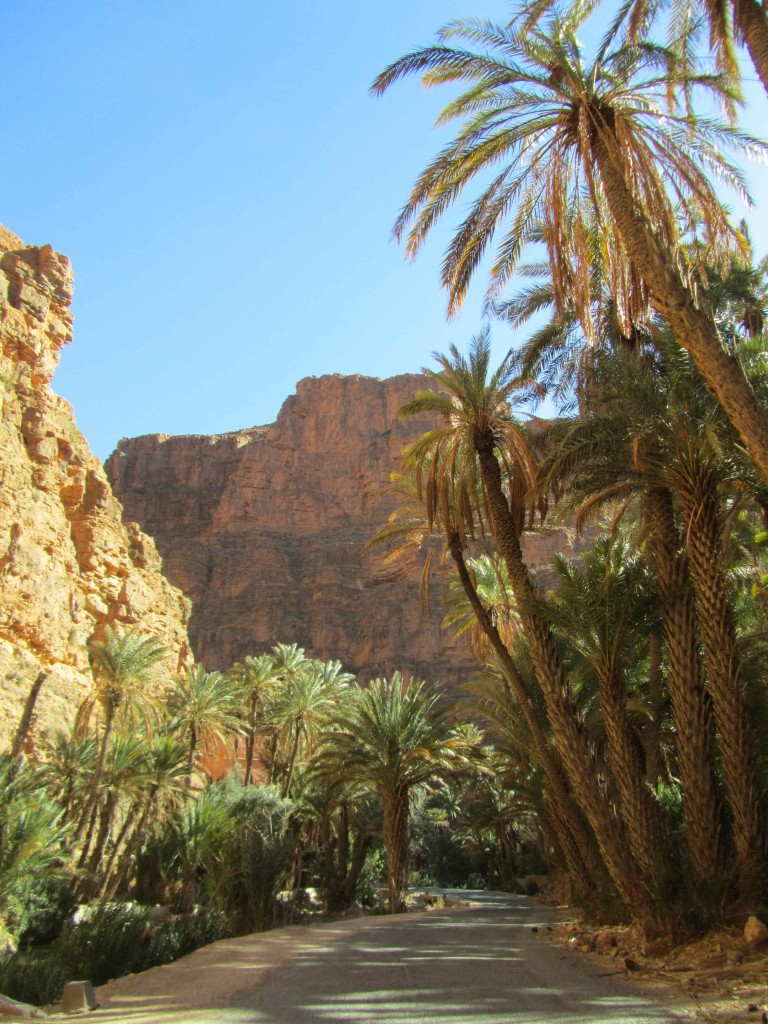 The oasis in a gorge, near Tafraoute