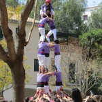 "A ""torre"" from the local team, the Altafulla Castellers"