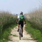 Riding through the swampy Prat de Cabanes-Torreblanca nature reserve