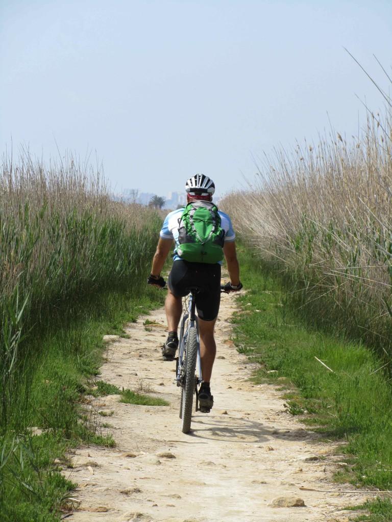 Riding through the swampy Prat de Cabanes-Torreblanca nature reserve