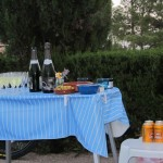 Bambi's birthday party: Cava and beer