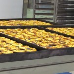 Trays of pasteis de natas, just out of the oven