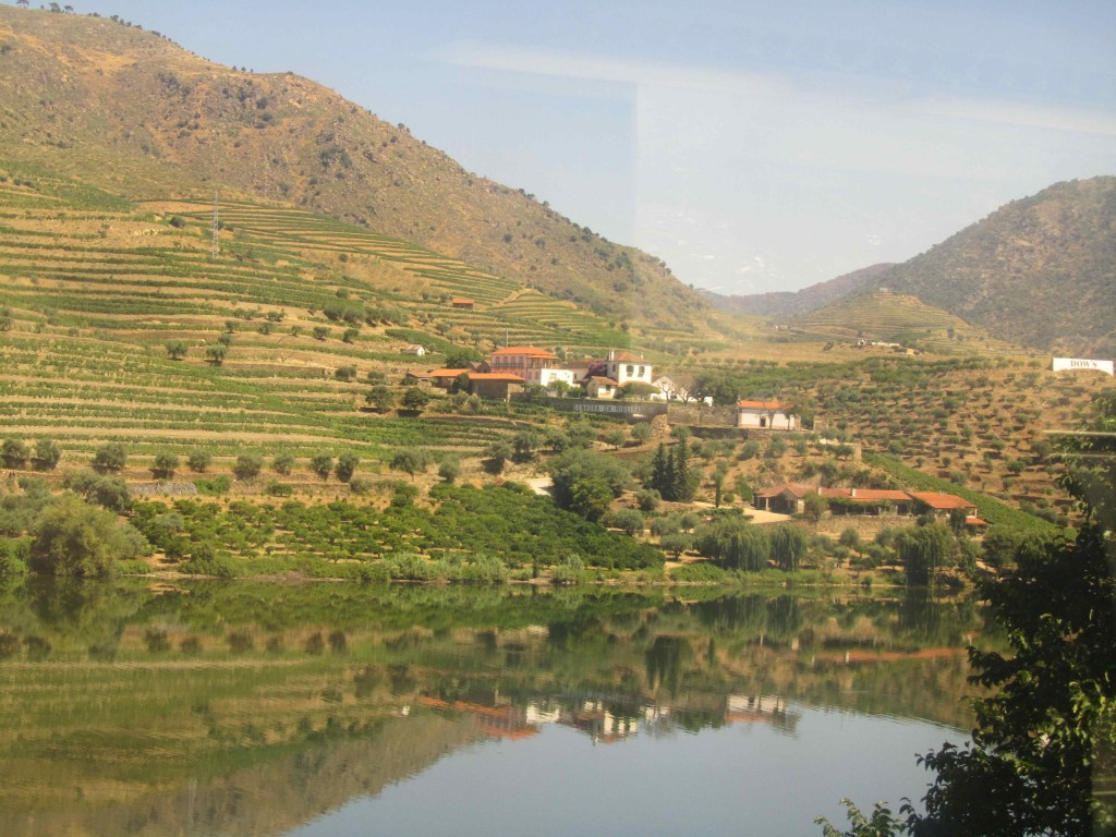 View of the Douro winelands from the train